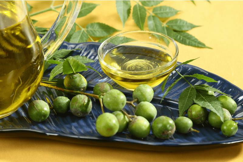 Neem Leaves and Neem Water