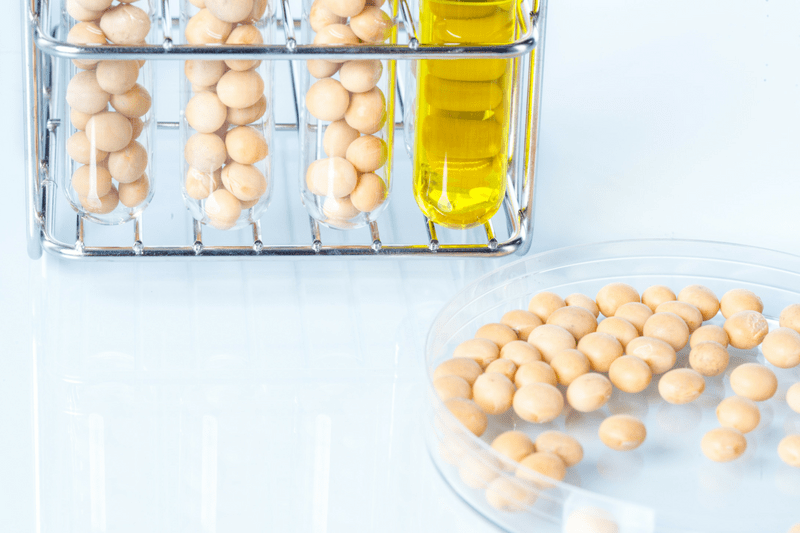 Soybean and Soy Oil