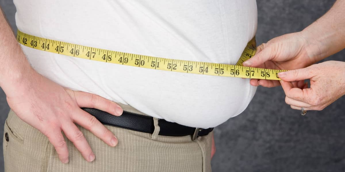 Obesity (Belly Fat)