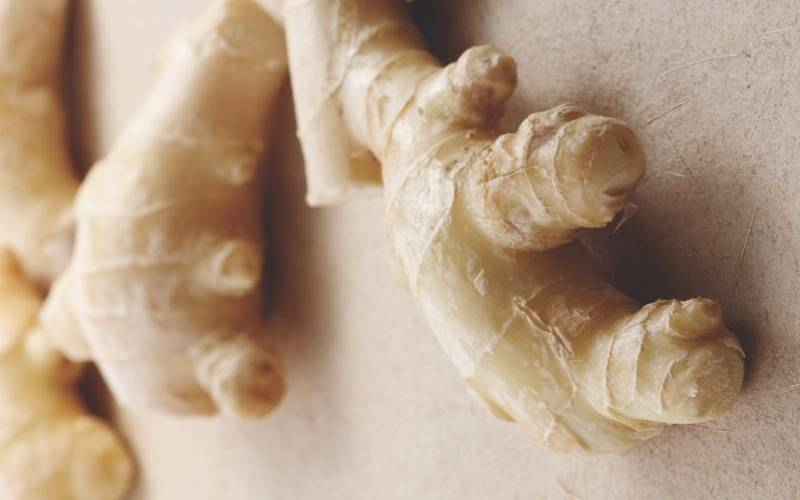 Ginger (Zingiber officinalis)